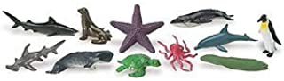 Safari Ltd Ocean TOOB Comes With 12 Different Hand Painted Animal Toy Figurine Models Including Sea Lion, Eagle Ray, Starfish, Turtle, Penguin, Octopus, Humpback Whale, Sperm Whale, Moray Eel, Hammerhead Shark, Tiger Shark, and Dolphin For Ages 5 and Up