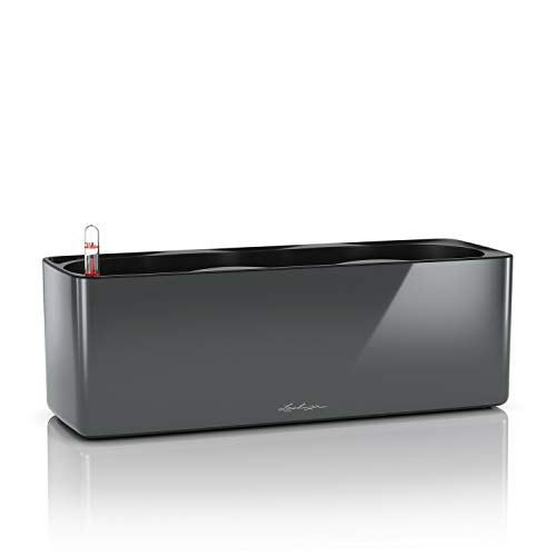 LECHUZA Cube, Maceta Brillante Triple de riego automático, Maceta Colgante para Interiores y...