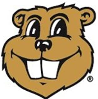2 inch Goldy Gopher UMn University of Minnesota Golden Gophers Logo Removable Wall Decal Sticker Art NCAA Home Room Decor 2 x 2 inches