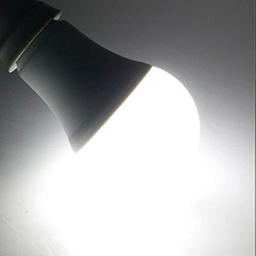 RZL LED Lights Bombilla de la lámpara LED inteligente Bombilla 12W E27...