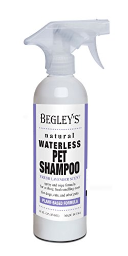 Begley's