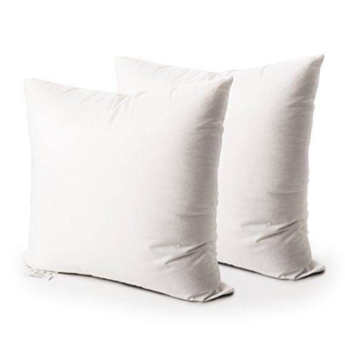 Edow Throw Pillow Insert, Set of 2 Down Alternative Polyester Square Form Decorative Pillow, Cushion,Sham Stuffer. (White, 20x20)