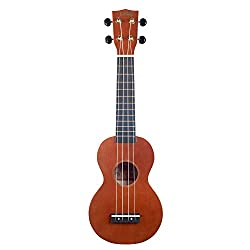Beginner Ukulele Kit