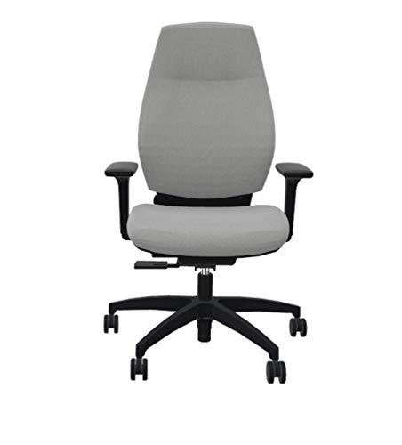 Dauphin Comfort XT 3D - Silla de oficina ergonómica y respetuosa con la espalda, color gris