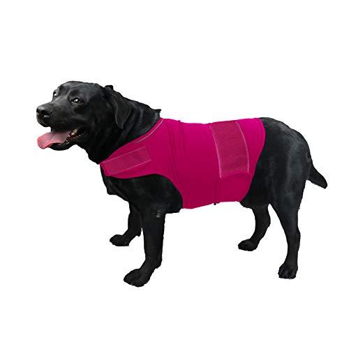 TT.WALK Beruhigungswesten für Hunde,Hundemantel zur Linderung von Angst,Anti Angst Jacke Beruhigende Wickelweste für kleine mittlere und große Hunde,Rosenrot,L