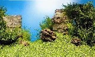 Juwel Fish Aquarium Poster 1 Background 150x60cm XLarge