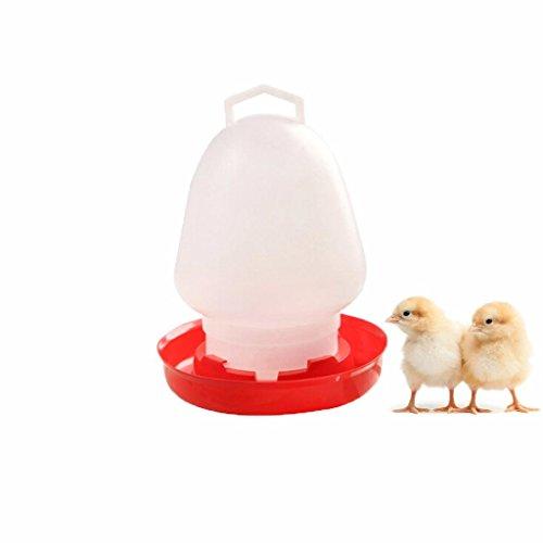 BraveWind Futterspender für Geflügel wie Hühnerküken, Wachteln, Enten, geeignet für Futter und Wasser, 300 ml, 1 oder 3 Stück 1 Pcs