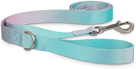 Good2Go Teal Ombre Dog Leash 6 ft Standard product image