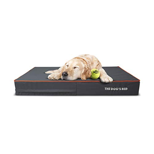 The Dog's Bed Orthopedic Dog Bed XL Grey/Orange 46x28, Premium Memory Foam, Pain Relief for Arthritis, Hip & Elbow Dysplasia, Post Surgery, Lameness, Supportive, Calming, Waterproof Washable Cover