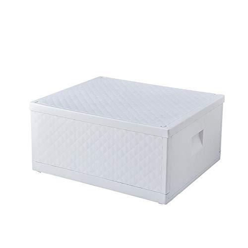 EXACT SELLER - Caja de almacenamiento plegable, 45 x 30 x 21 cm, color blanco