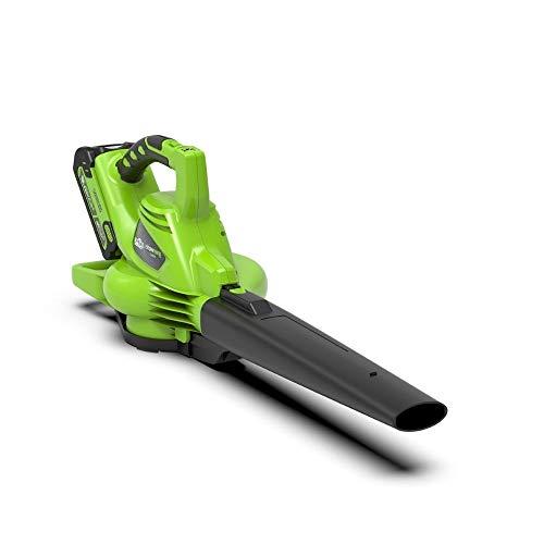 Greenworks Tools Akku-Laubsauger und -Laubbläser 2in1 GD40BV (Li-Ion 40 V 280 km/h Luftgeschwindigkeit 45l Fangsack Drehzahlregulierung leistungsstarker brushless Motor ohne Akku und Ladegerät)