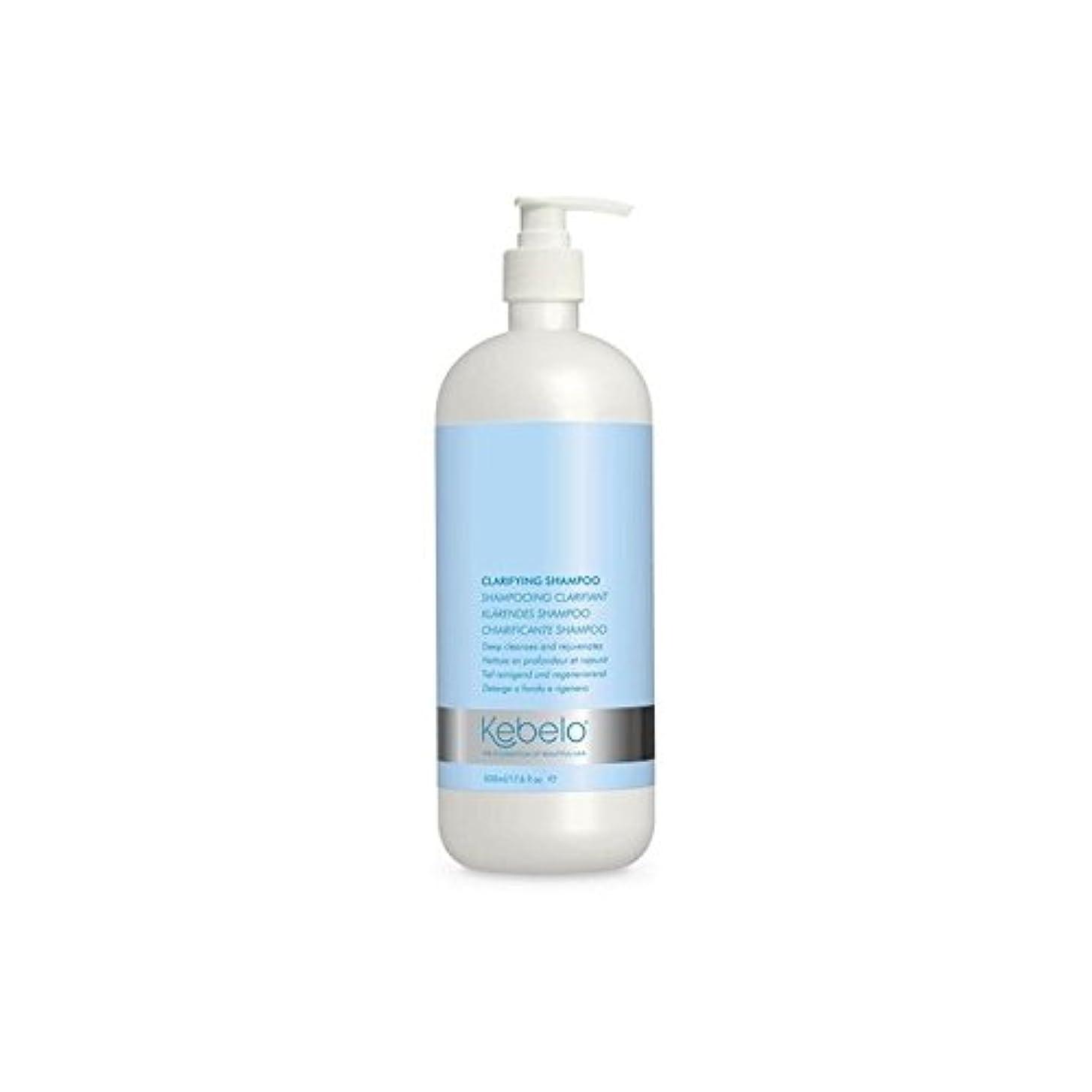 借りている下るしないでください明確化シャンプー(500ミリリットル) x2 - Kebelo Clarifying Shampoo (500ml) (Pack of 2) [並行輸入品]