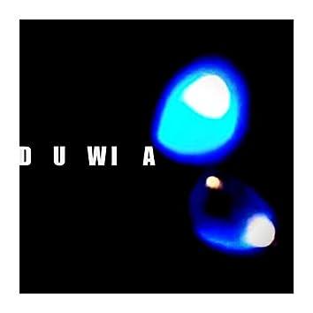 D U Wi A