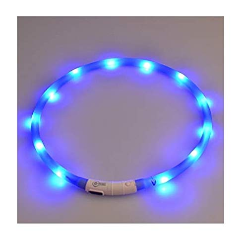 LED Dog Collar Light Up Night Safety Collar USB Rechargeable Waterproof for...
