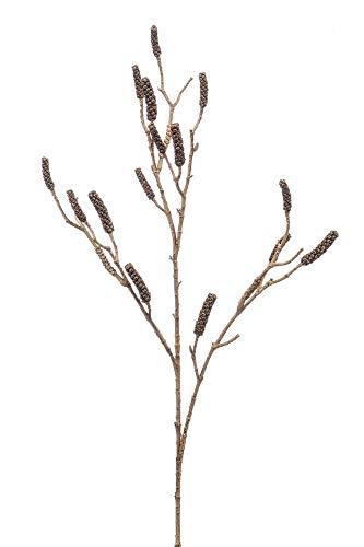 artplants.de Set 6 x Kunst Zylinderputzer Zweig DURERO mit Früchten, braun, 120cm - Kunstzweig Callistemon - Deko Zylinderputzer
