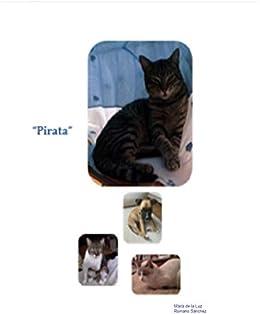 Pirata eBook: Romano Sanchez, Maria de la Luz: Amazon.es: Tienda Kindle