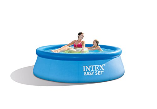 Intex 28110NP