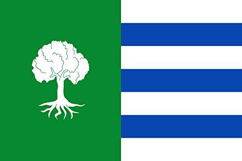 magFlags Bandera Large Municipio de Olmedilla de Alarcón Castilla-La Mancha | Bandera Paisaje | 1.35m² | 90x150cm