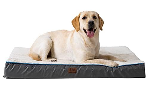 dog bed orthopedic extra large - 6