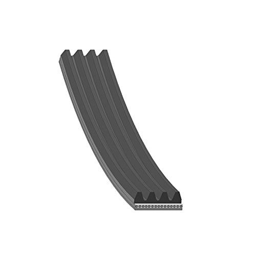 Preisvergleich Produktbild Blue Print AD04R790 Keilrippenriemen / Keilriemen - 4PK790,  Rippenzahl 4,  1 Stück