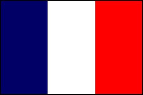 Flag Bunting (8 pieds, le papier de qualité) - France [Jouet]