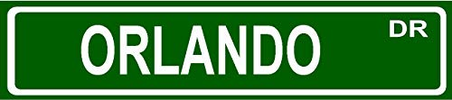 Orlando Standard Green Street Sign Style 8' Wide Magnet for use on Any Steel Surface