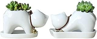 2 PCS Set Cute Cartoon Animal Lazy Cat Shaped Ceramic Succulent Cactus Flower Pot