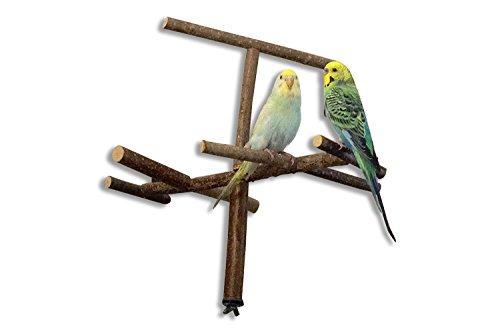 Käfigantenne, Cooles Vogelspielzeug als Anflugstange oder Sitzplatz aus Naturholz