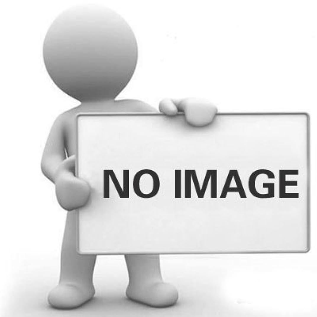 バッジ香水容疑者DYNWAVE ヘアカラーブラシサロンブラシ漂白色合いパーマ染料着色ブラシ(2パック)