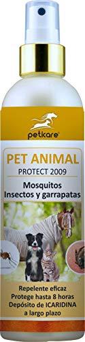 Peticare Multi-Repelente de Insectos para Animales - Spray Especial con Icaridin Caballo, Perro, contra Mosquitos, garrapatas, 100% biológico - petAnimal Protect 2009 (250 ml)