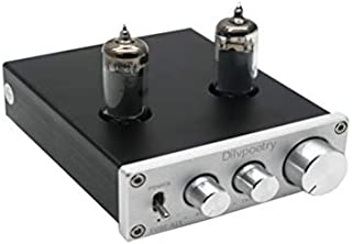 Dilvpoetry TUBE-6K4 Mini Vacuum Tube Amplifier HiFi Audio Tube Preamplifier Preamp NE5532P Chips Desktop Amp(Silver)