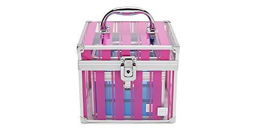 Caboodles Miami beat - prima donna | costmetic storage case & organizer, Fuchsia Stripes Train Case & Blue Little Priss Bonus Case