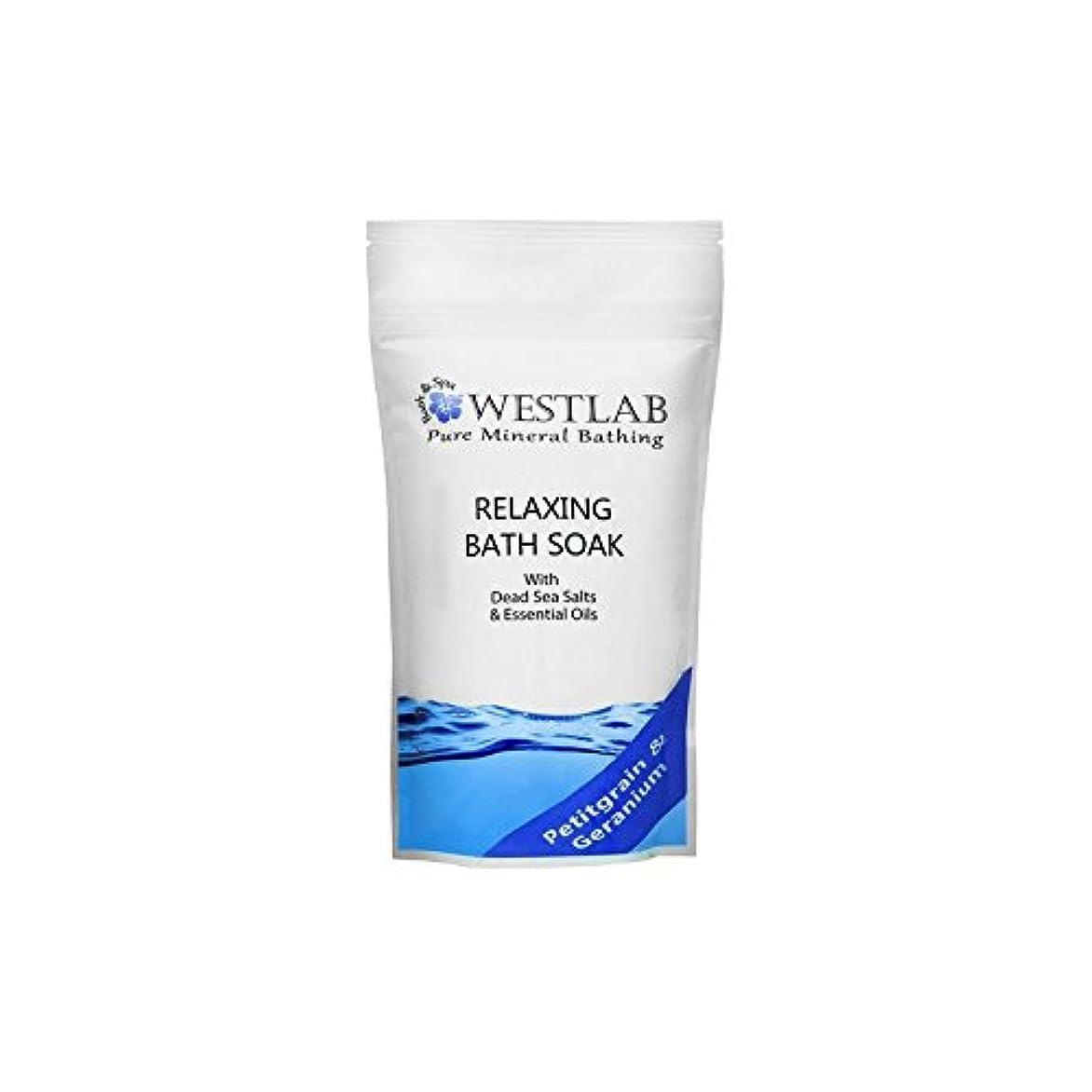 コイン黙認する吹雪Westlab Relax Dead Sea Salt Bath Soak (500g) (Pack of 6) - 死海の塩浴浸漬(500グラム)をリラックス x6 [並行輸入品]