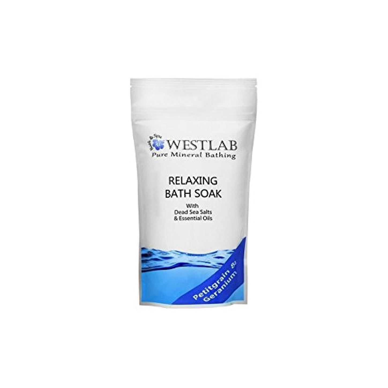 案件旅行ダイエット死海の塩浴浸漬(500グラム)をリラックス x4 - Westlab Relax Dead Sea Salt Bath Soak (500g) (Pack of 4) [並行輸入品]