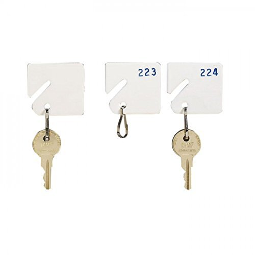 MMF Industries 5313231AB06 Slotted Rack Key Tags with Snap-Hook, White, Numbered Sequence - 21 - 40, 1-1/4H Inch, Plastic/Nickel-Plated Snap Hook (20 per Pack)