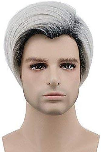 Hommes 's court gris perruque de cosplay perruque de fête perruque de célébrité perruque de HalFaibleeen perruque