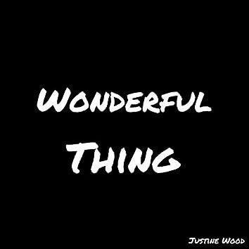 Wonderful Thing