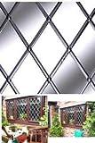 Striscia autoadesiva per finestre (argento naturale) 6 mm x 5 m bobina Modello rettangolare/diamante incluso.