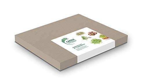 Keimsaatgut Set mit 12 Samensorten, Keimsprossen, Samen für die Sprossenanzucht, leicht anbaubar, Sprossen selber züchten, hohe Keimfähigkeit, gesunde Ernährung