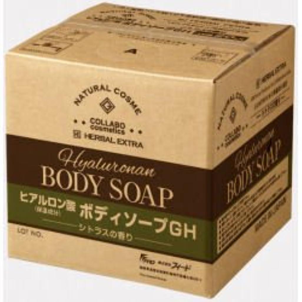 ゼミド×ハーバルエクストラ ヒアルロン酸ボディソープGH シトラスの香り 20kg