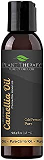 Plant Therapy Camellia Seed Carrier Oil 4 oz A Base Oil for Aromatherapy, Essential Oil or Massage use