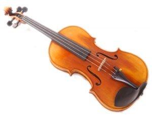 Stentor Arcadia - Violino 4/4 (preparato)