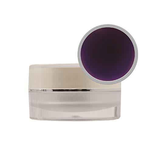 Poudre acrylique de couleur violet foncé - 10 g Pro Impressions