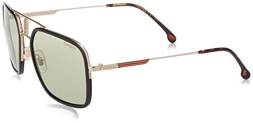 Carrera 1027/S gafas de sol, Oro Havn, 59 para Hombre