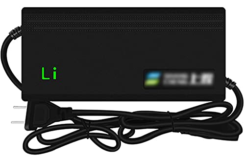 QDY -Caricabatteria al Litio da 42 V per Scooter Elettrico 36 V 4 A, Adattatore di Alimentazione Universale agli Ioni di Litio per Monociclo Autobilanciato Skateboard Hoverboard,G