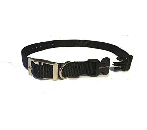 """Educator E Collar 3/4"""" Quick Snap Double Buckle Replacement Dog Strap,Black"""