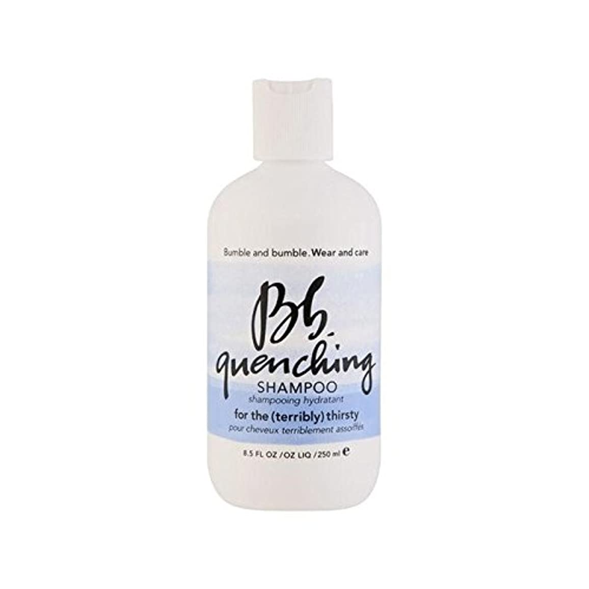 安いです見分ける留まるBumble & Bumble Wear And Care Quenching Shampoo (250ml) - シャンプー(250ミリリットル)を急冷着用し、世話 [並行輸入品]
