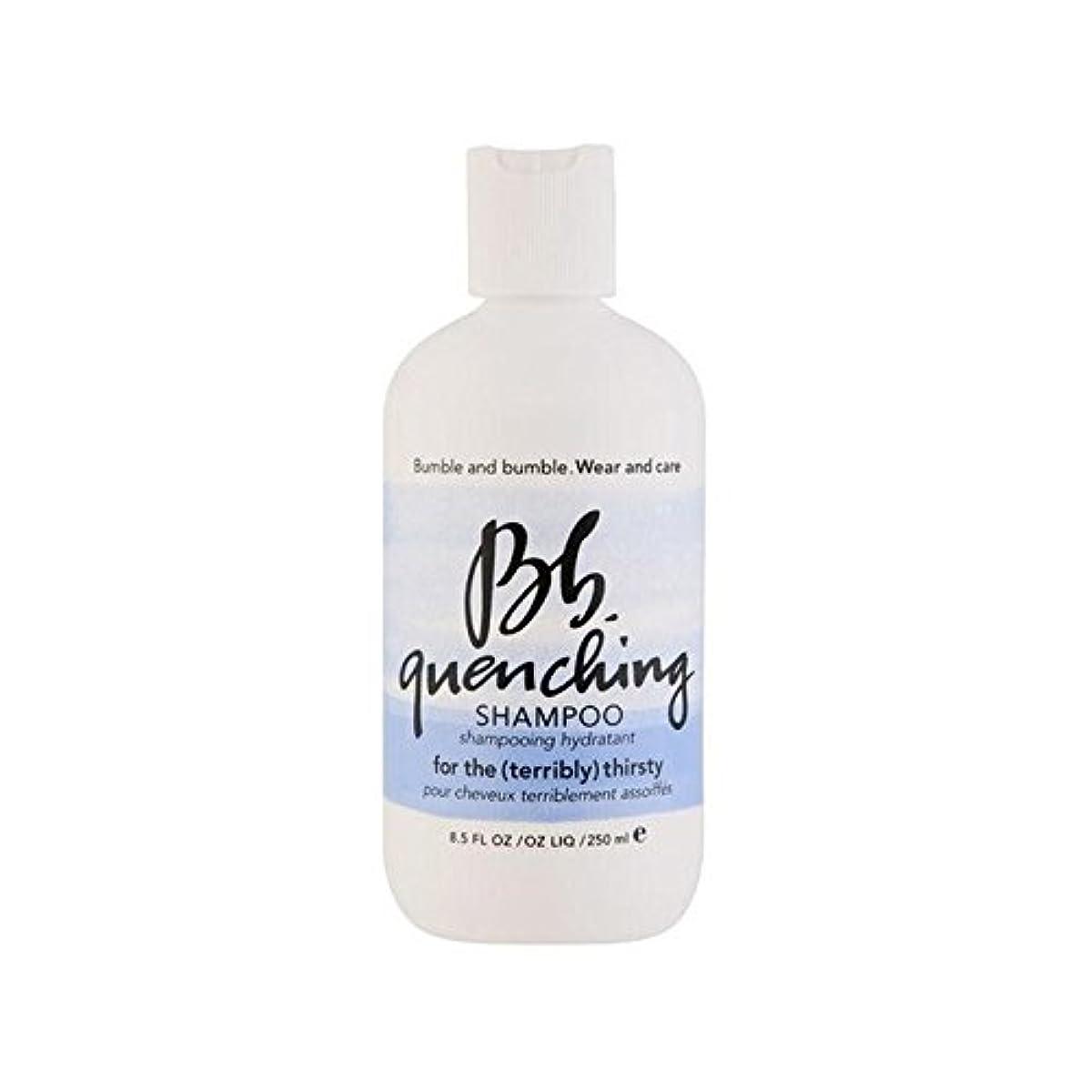 はっきりと飾る飾るBumble & Bumble Wear And Care Quenching Shampoo (250ml) - シャンプー(250ミリリットル)を急冷着用し、世話 [並行輸入品]