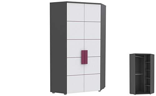 Furniture24 Eckkleiderschrank Libelle LBLS89, Schrank, 2 Türiger Eckschrank mit 4 Einlegeboden und 2 Kleiderstangen, Jugendschrank (Grau/Weiß/Violett)