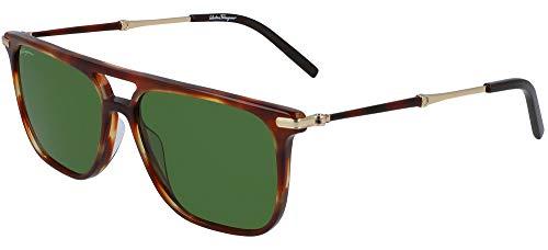 Gafas de Sol Salvatore Ferragamo SF966S HAVANA/GREEN 57/15/150 hombre